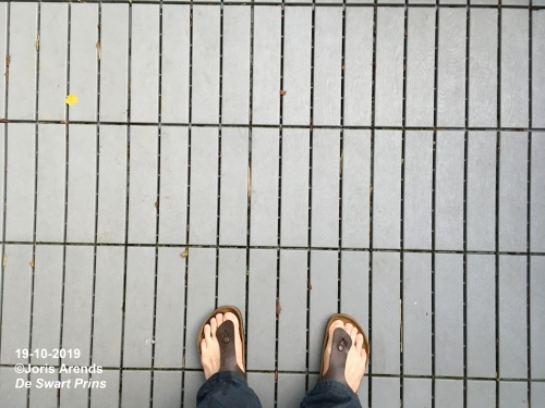 20131019 Lines and Sandals